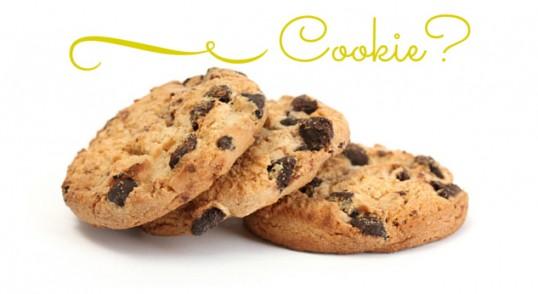 cookie law spiegazioni